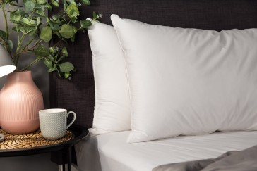 Supreme Pillow Pair 600GSM