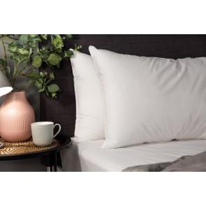 Hotel Accents Micro Fibre Pillow Pair 600GSM 5pr/bag